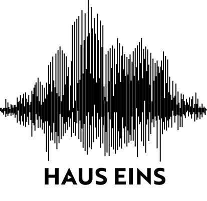 Hauseins logo klein